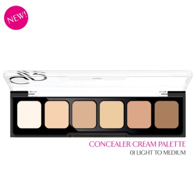 Golden Rose Correct & Conceal Palette, 01 Light to Medium, 12g